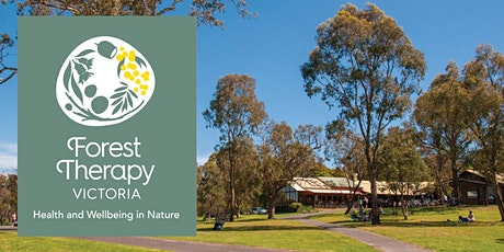 Forest Therapy All Ability Walk tickets