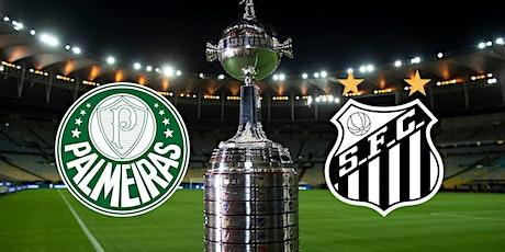 ViVO!!.-@ Santos v Palmeiras E.n Viv y E.n Directo ver Partido online 2021 entradas