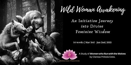 Wild Woman Awakening: Online Course Tickets