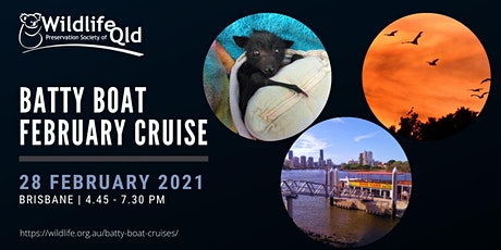 Batty Boat Cruise tickets