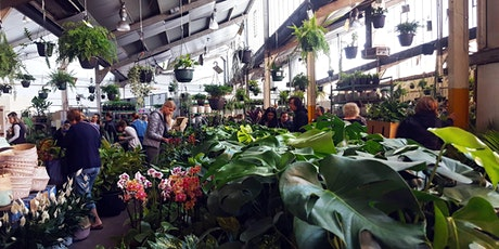 Adelaide - Huge Indoor Plant Warehouse Sale - Mystery Location tickets