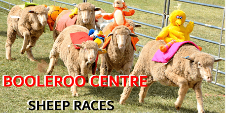 Booleroo Centre Sheep Races tickets