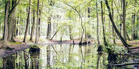 Trees, Water, Animals and Humans & Introduction to Forest Bathing tickets