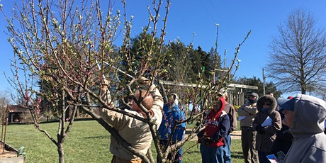 Tree Fruit Pruning With Dr. Mike Parker tickets