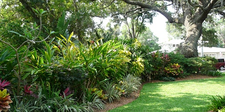 Florida-Friendly Landscaping 101 (webinar) tickets