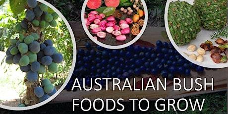 Australian Bush Foods to Grow in Your Garden- Part 1 tickets