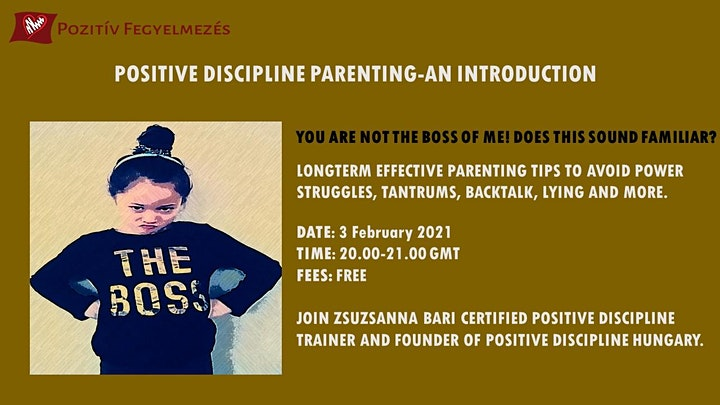 Positive Discipline Parenting Solutions -An Introduction image