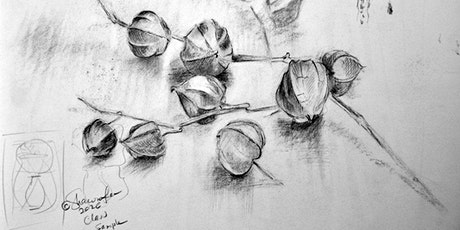 Drawing Skills ~ Seven Week Art Course with ShawnaLee tickets