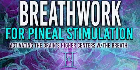 AWAKENING ELEVATED STATES-BREATHWORK FOR PINEAL GLAND STIMULATION tickets