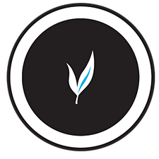 MyVision McGill logo