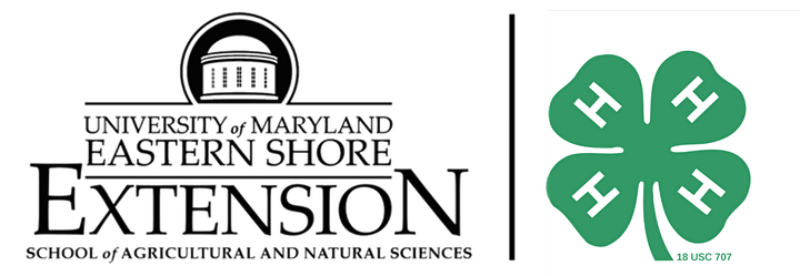 Junior Master Gardener Level 1 Certification Class image