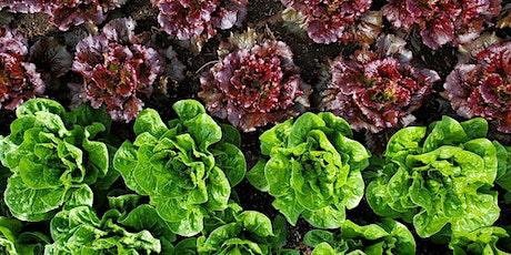 Organic, No-Till Gardening tickets