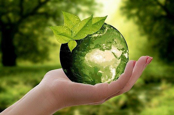 Participez aux défis climatiques en 2021 image