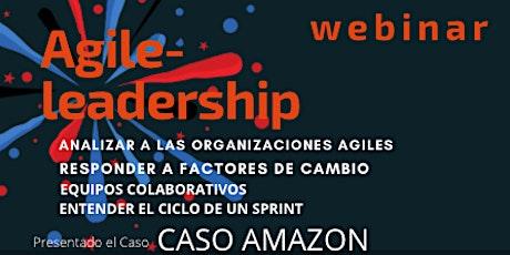 Agile leadership Webinar tickets