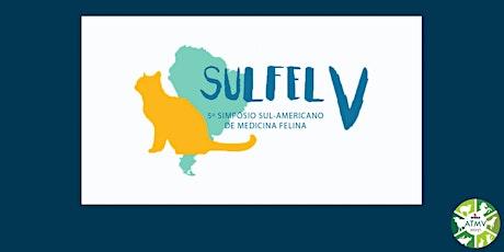 Sulfel 2020 - V Simpósio Sul-Americano de Medicina bilhetes