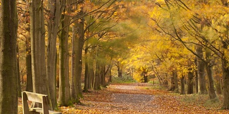 Tree Survey and Inspection (LANTRA certificate of attendance) - second course added tickets