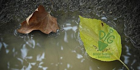DIG ONLINE: Let it Rain - Simple Rainwater Harvesting Using Earthworks tickets