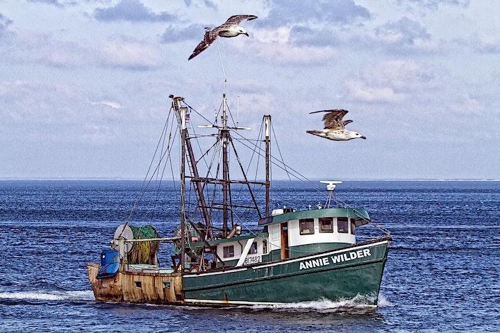 Castafari  Virtual Fishing School - Tuna South Of NY & RI - Mark Decabia image