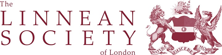 Meet the Stemettes @ The Linnean Society - Virtual Panel and Networking image