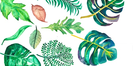 Botanical Watercolour with Artist Eva Merendes tickets