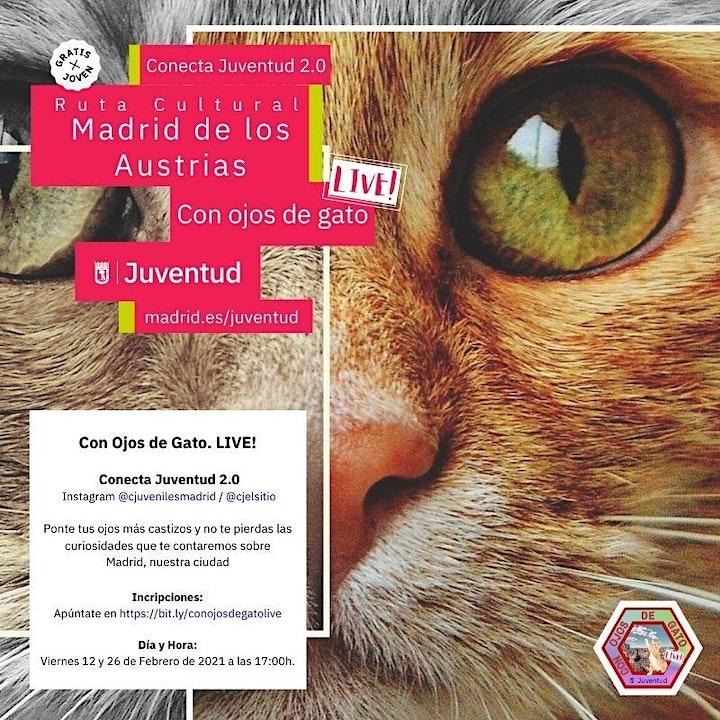 Imagen de Con Ojos de Gato. Live!