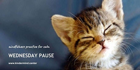 Mindfulness Practice: Wednesday Pause - Sydney tickets