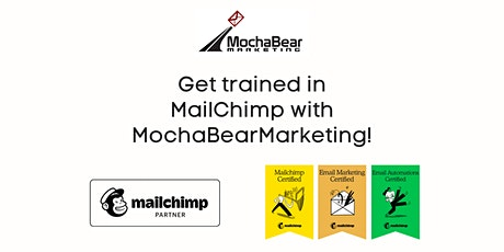 MailChimp One-On-One Customized Training tickets