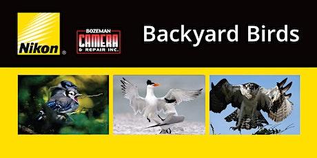 Backyard Birds - Nikon's Michael Corrado tickets