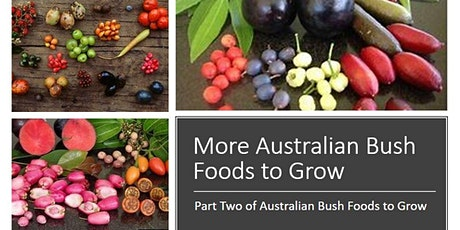 More Australian Bush Foods to Grow - Part 2 tickets