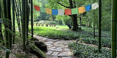 Tea Meditation at Mountain Light Sanctuary tickets