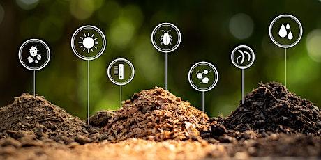 Understanding Mycorrhizae tickets