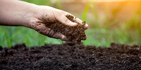 Soil Structure  - An Overview biglietti