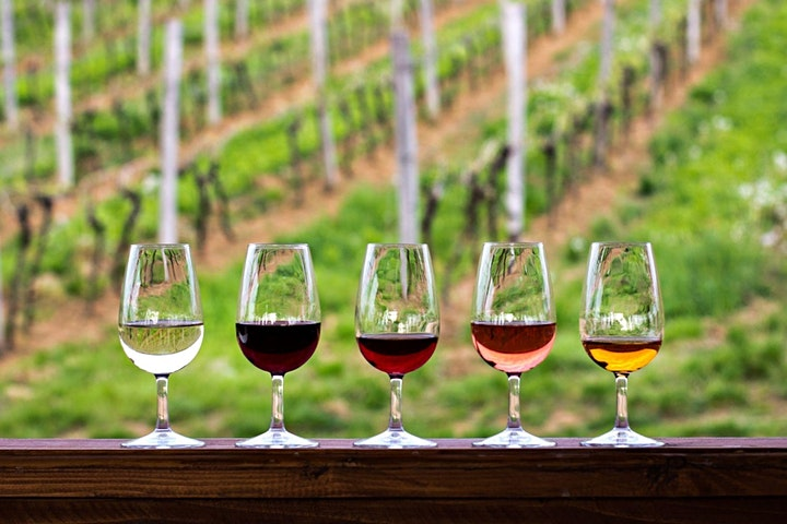 SIP Virtual Wine Tasting and Education Series with Cellar Angels image