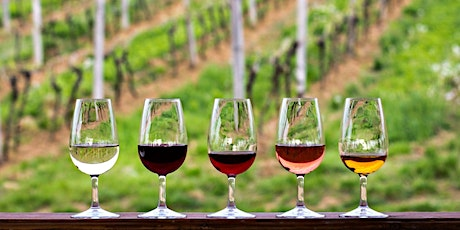 SIP Virtual Wine Tasting and Education Series with Cellar Angels tickets
