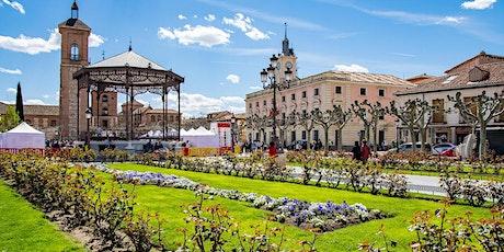 Free Tour -  Alcalá de Henares entradas