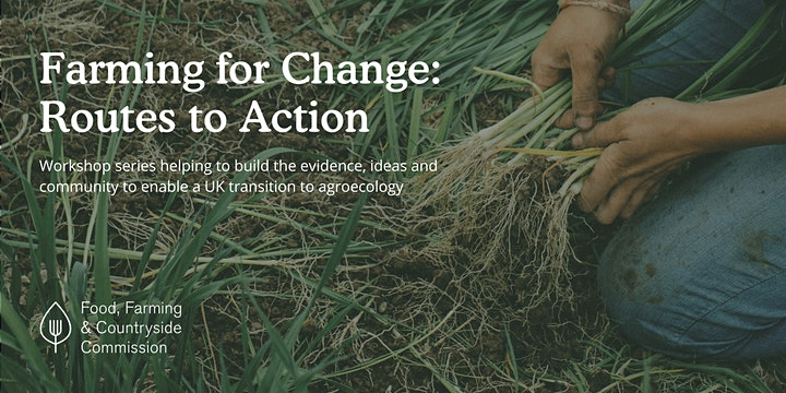 Routes to Action: changing our land management image