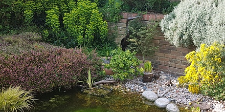 Open garden featuring vegetable plot and pond tickets