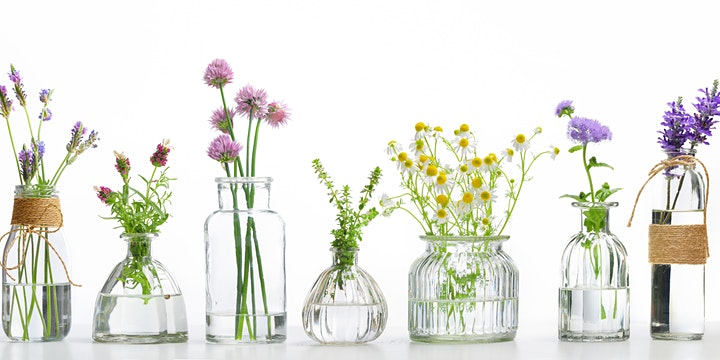 Spark Creativity for Your Content Writing  with  Essential Oils image