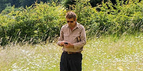 Surveying butterflies: Transect and WCBS Survey Technique tickets