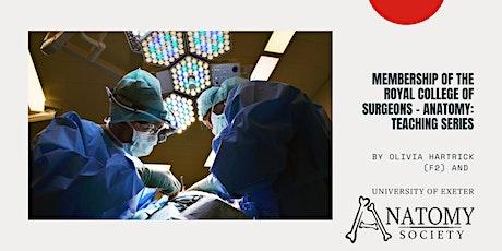 MRCS Anatomy Series: Abdominal Wall & Cavity by Anisa Kushairi tickets