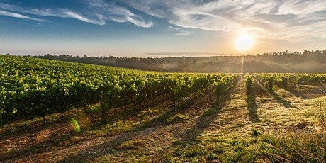 A Virtual Argentine Wine & Cheese Tasting tickets