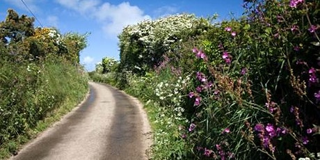 Cornwall: changing the scene for pollinators and people tickets