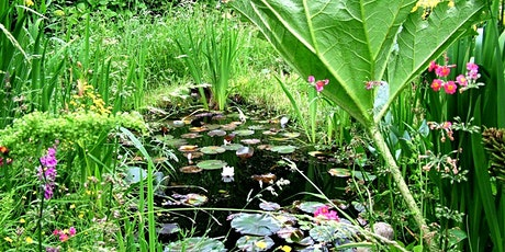 Wildlife gardening 1; ponds, wildflowers, birds tickets