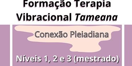 Formação Tameana - Terapia Vibracional Pleiadiana bilhetes
