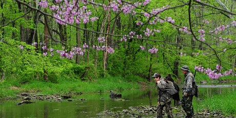 Turkey Hunting 101, Pigeon River Fish & Wildlife Area tickets