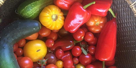 Thurs class:  Warm Season Crops, Edible Flowers, & Attracting Pollinators tickets
