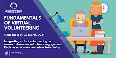 Fundamentals of virtual volunteering tickets