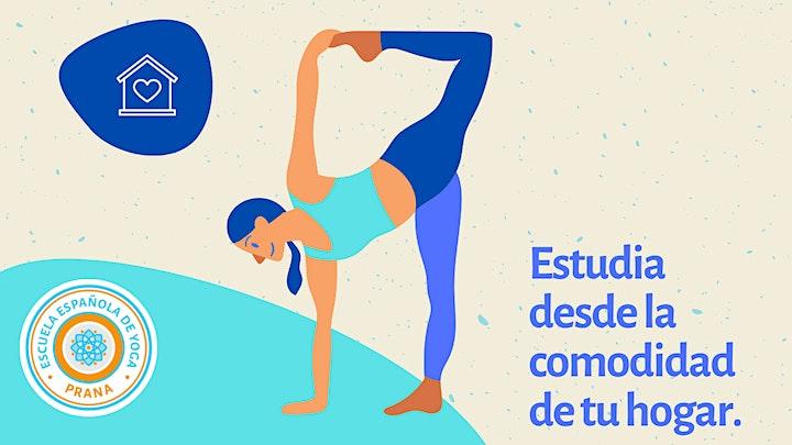 Imagen de Especialización Yoga Vinyasa (Iberoamérica)