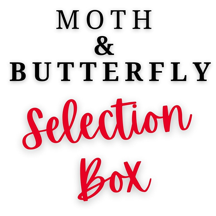 THE MOTH & BUTTERFLY SELECTION BOX image