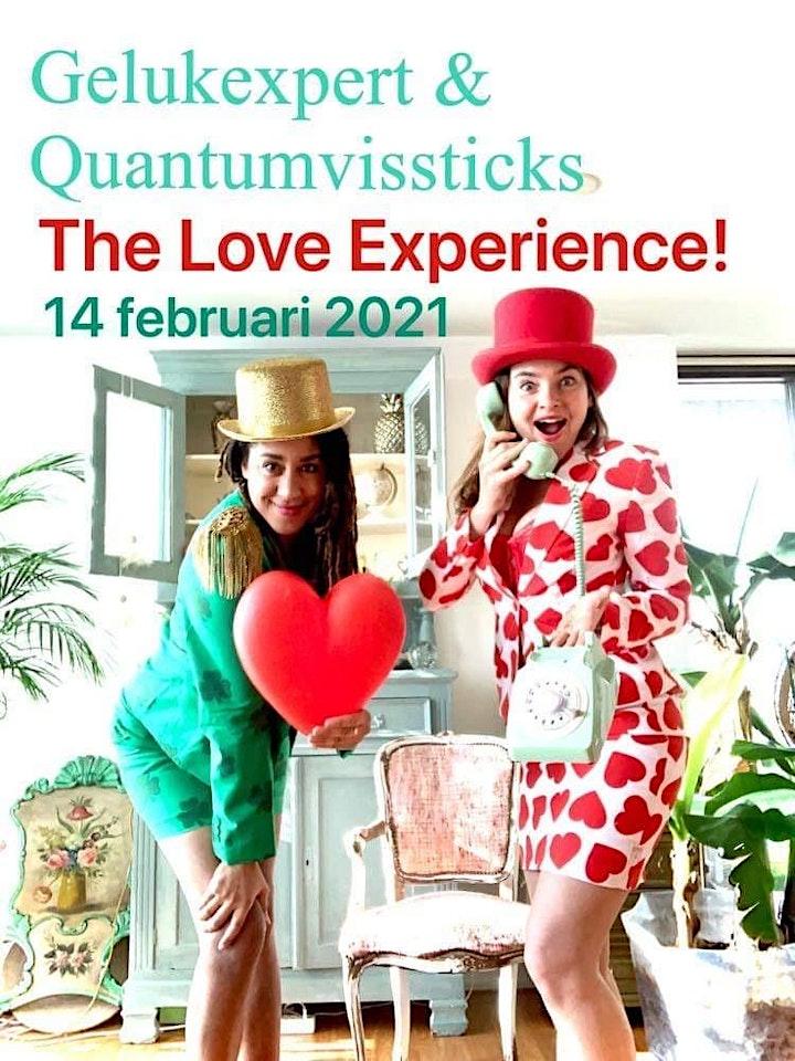 Afbeelding van Gelukexpert & Quantum Vissticks   The Love Experience